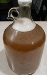 Fermenting mead - 1 gallon